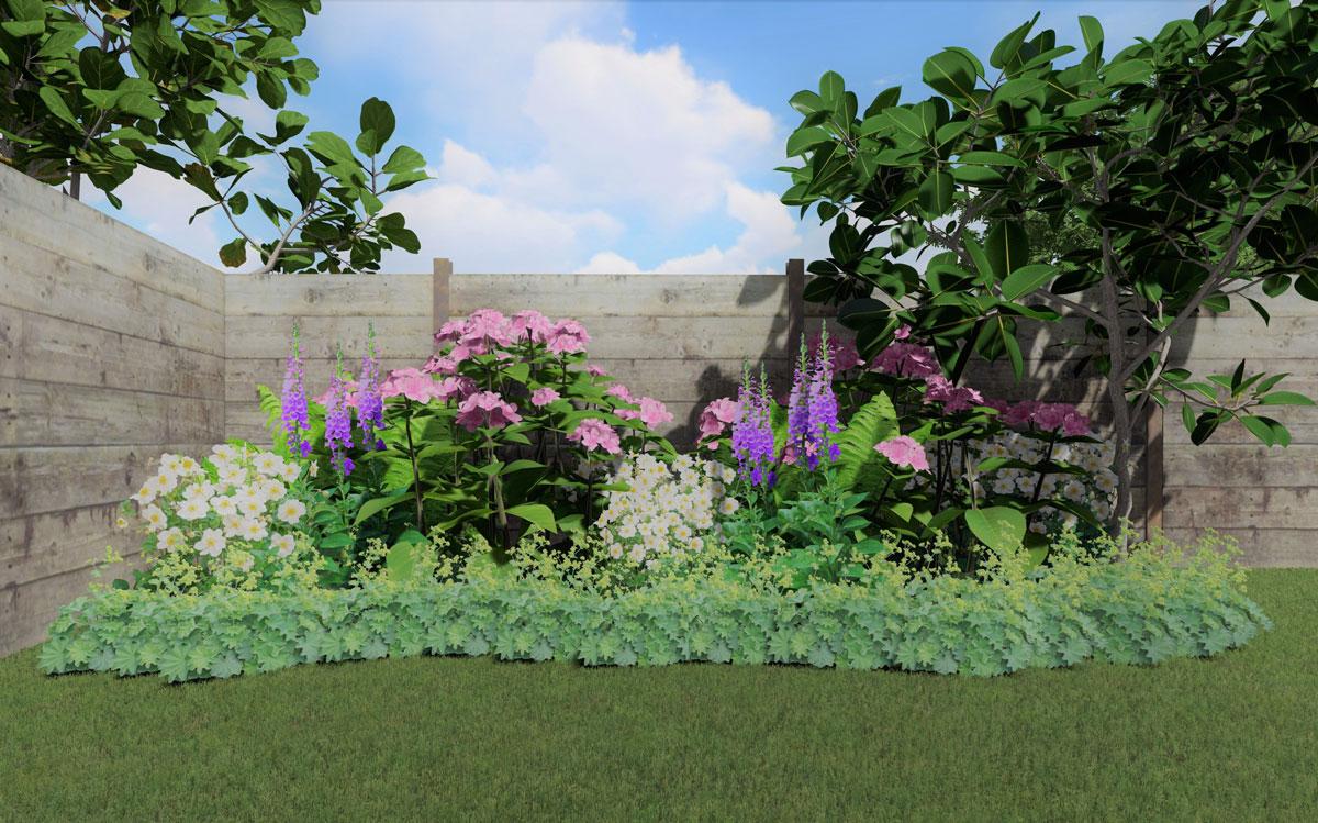 Návrh kombinace rostlin do polostínu