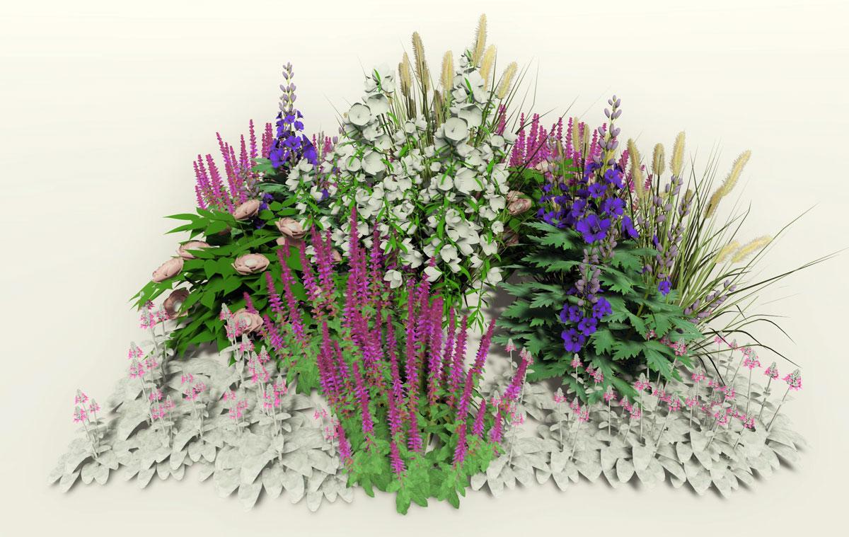 Návrh kombinace rostlin pro slunný venkovský záhon