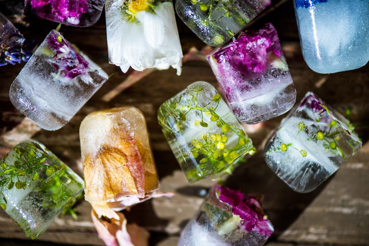 Jedlé květy zamražené v kostkách ledu