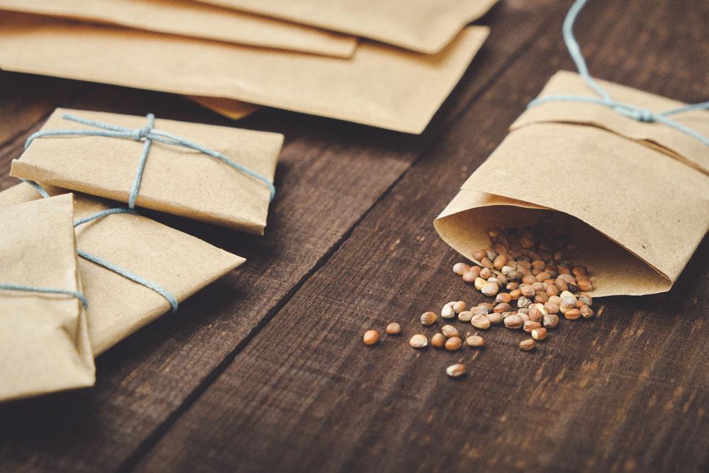 různé osivo uskladněné v papírových sáčcích