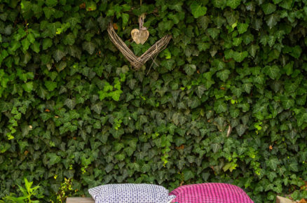 dřevěné sezení při živém plotě