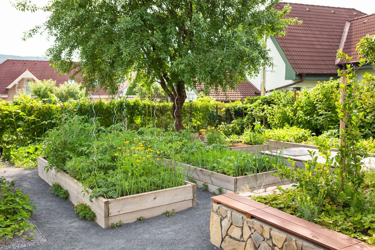 Užitkové vyvýšené dřevěné záhony ve svahovité zahradě