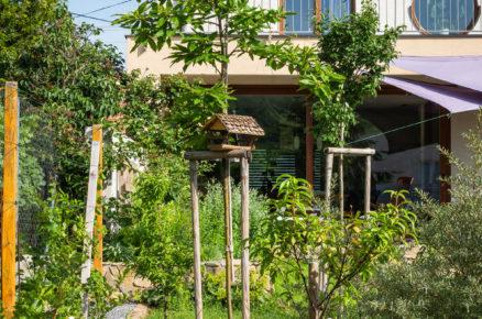 stolek a dřevěné židle uprostřed užitkové a okrasné zahrady